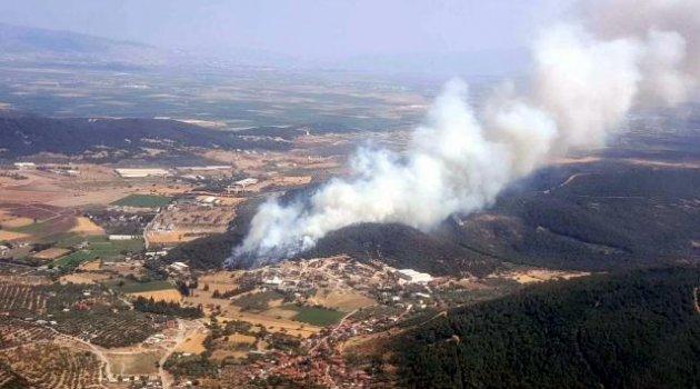 Foça ilçesinde ormanlık alanda yangın çıktı.